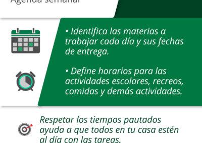 1 - ORGANIZAR EL TIEMPO